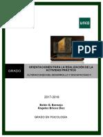Orientaciones_para_la_realizacio´n_de_la_Actividad_Pra´ctica_.pdf