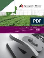 vid.pdf