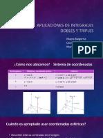 presentacion integralesDT