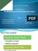 neuroanatomi Responsi fix.pptx