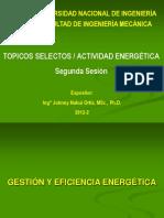 actividad energetica.pdf