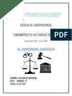 El Fenómeno Jurídico