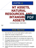 Plant Assets Natural Resources and Intangible as[2]