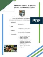informe-2-Bioind.