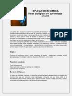 Descripcion Del Diploma PDF