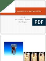 Alterações Pulpares e Periapicais Prof Carolina
