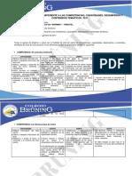 Informe Sobre Competencias y Capacidades