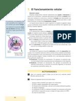 UNIDAD [Pages 8 - 11].pdf