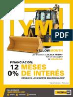 Yellow Month 12