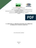 DAYANNE BATISTA SAMPAIO WEB.pdf