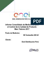 Informe Enel Ventanilla 220kV Febrero 2017