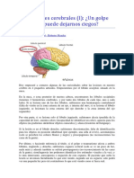 Curiosidades cerebrales.docx