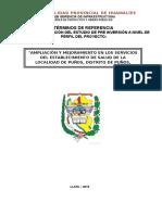 TDR PERFIL POSTA DISTRITO PUÑOS.doc
