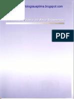 Manual da Técnica do Arco Segmentado - PAULO CESAR RAVELI.pdf
