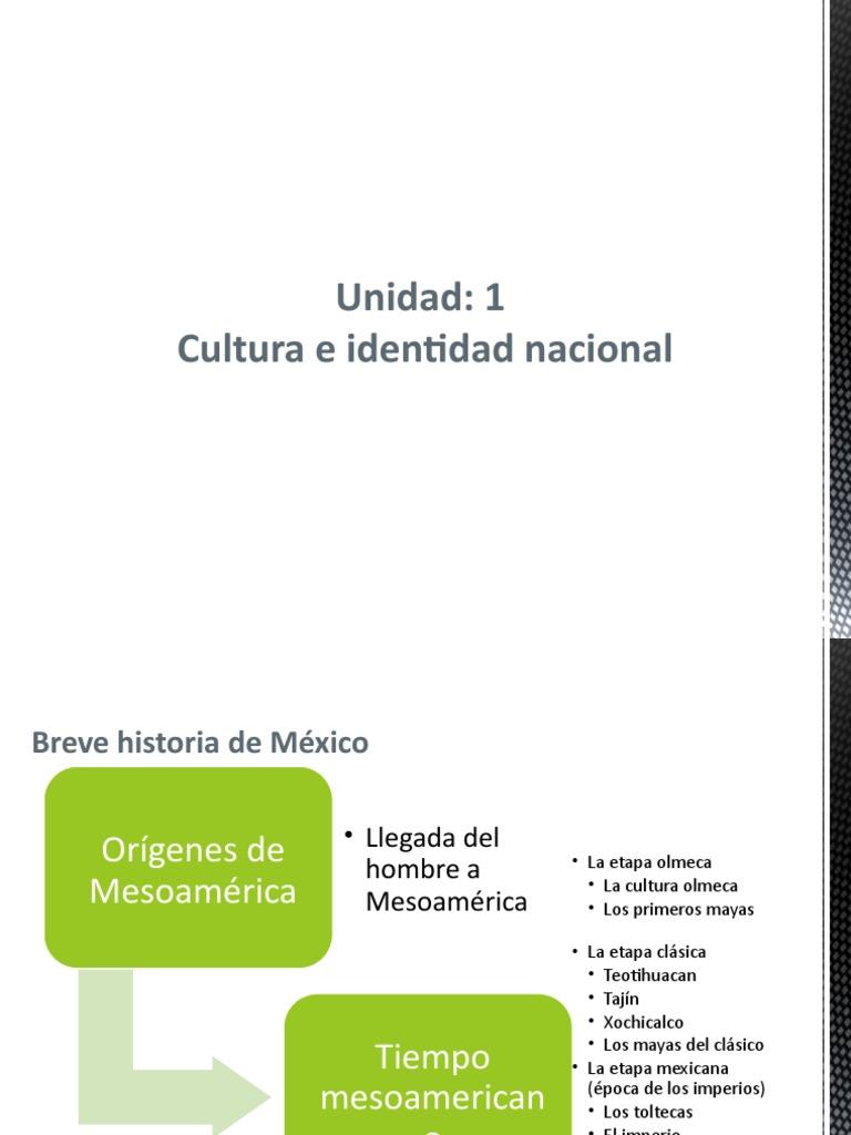 Cultura E Identidad Nacional C1