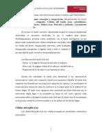 tema11-tejido-oseo.pdf