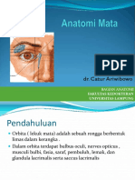 Anatomi Mata.pdf