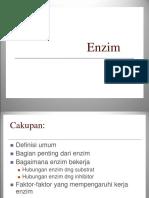 Enzim(ppt)