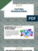 Cultura Organuzacional