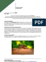 Informe Dengue