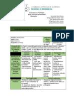Ficha de Organización de Datos Integrales en Fisioterapia.