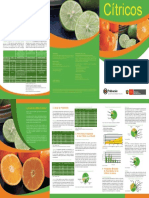 citricos.pdf