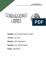 76673078-CONDUCCIONES-LIBRES.doc