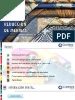 Proyecto Creditex Reduccion de Mermas