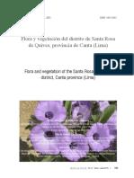 Quives, Santa Rosa de Lima