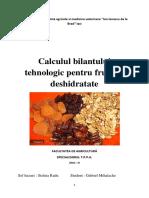 Calculul Bilantului Tehnologic Pentru Fructele Deshidratate