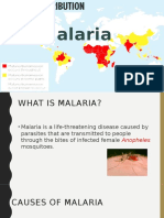 Malaria presentation.pptx