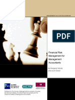 Cid Mag Financial Risk Jan09