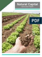 Soil and Soil Health