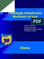 IntestSubt 17