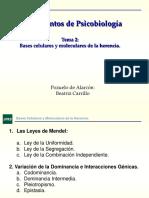Tema 2_Bases Celulares y Moleculares de La Herencia_apuntes