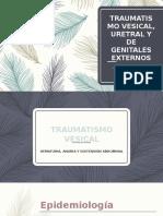 Traumatismo vesicouretrogenital