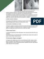 forense.doc