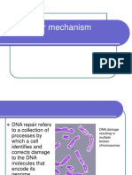 25895327 Dna Repair Mechanisms