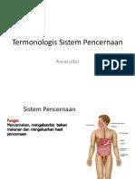 Termonologis Sistem Pencernaan
