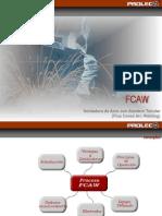 z-Proceso.FCAW.ppt