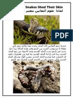 Why Do Snakes Shed Their Skin لماذا تقوم الثعابين بتغيير جلودهم ؟