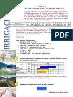 GUÍA nº2  calculo del caudal de entrega en la parcela.pdf