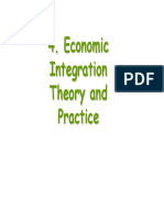 Economic Integration Theory
