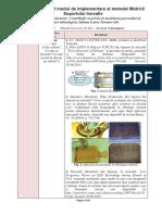 __Exemplu.pdf