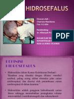 Hidrocefalus-Ppt.ppt