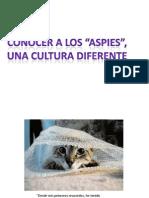 Conociendo a Los Aspies