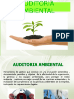 AUDITORIA AMBIENTAL 3