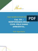Capítulo 4 - Responsabilidade civil