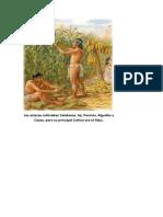 Los Aztecas Cultivaban Calabazas