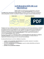 Practica 5 Bioquimica